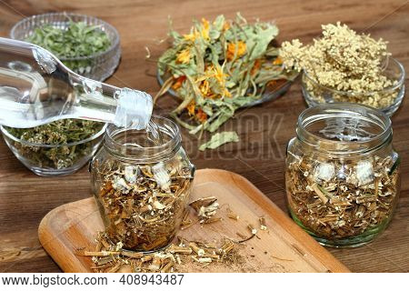 Tincture From Dried Nettle Roots, Urtica Diocica,  Against Hair Loss. Herbs Infusing For Tincture, O