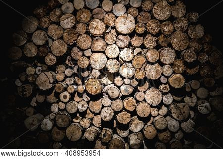 Wall Of Sawed Tree Trunk Ends With Dramatic Lighting And Vignette. Great For Background.