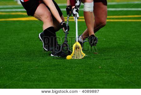 Lacrosse Pacific University 449