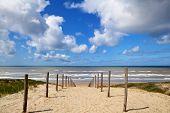 path to the beach on North Sea in Zandvoort aan Zee Netherlands poster