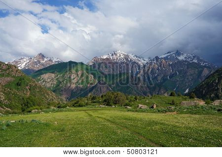 Mountains covered with snow, a green meadow with a juicy grass and the dark blue sky