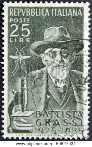 ITALY - CIRCA 1956: A stamp printed in Italy shows Battista Grassi circa 1956