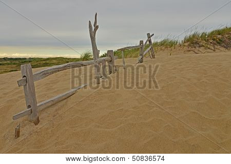 Old Dune Fence