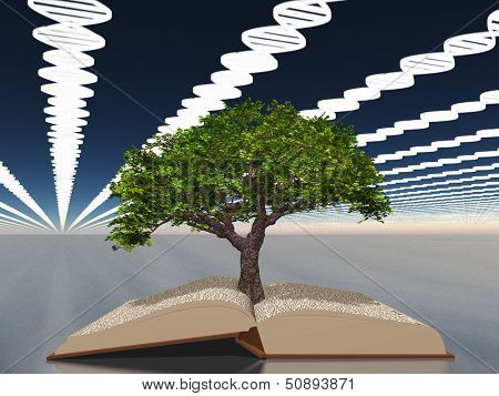 Book of life with tree of life