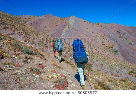 Group trekkers running on the road against Leh
