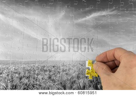 Landscape Jigsaw Puzzle Of A Greyscale Wheat Field