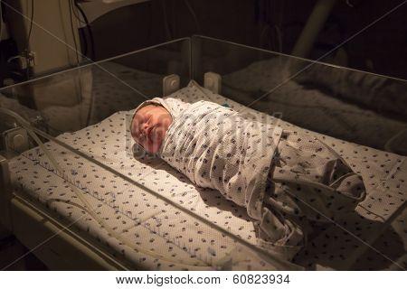 Newborn Baby At Icu