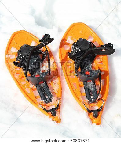 Orange Snowshoes For Walking On The Soft Snow