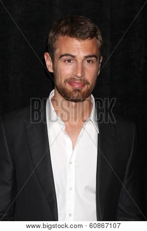 LOS ANGELES - FEB 28:  Theo James at the 2014 Publicist Luncheon at Beverly Wilshire Hotel on February 28, 2014 in Beverly Hills, CA
