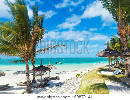 rocky beach of mauritius with palm trees and deckchairs in a beautiful summer day