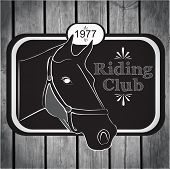 Retro label riding club vector on a wooden textured background poster