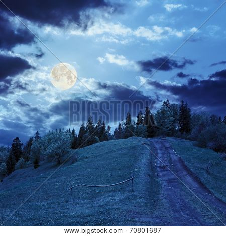 Path To Mountain Forest In Moon Light