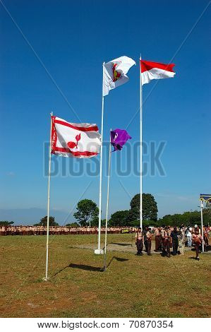 Rover Moot flags