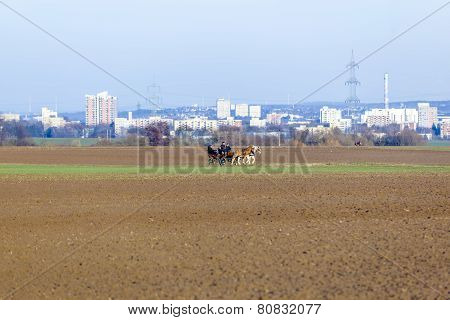 STIERSTADT GERMANY - MARCH 2 2013: coachman with horse coach rides in the fields in Sulzbach Germany. In the background the skyline of Frankfurt in evening light.