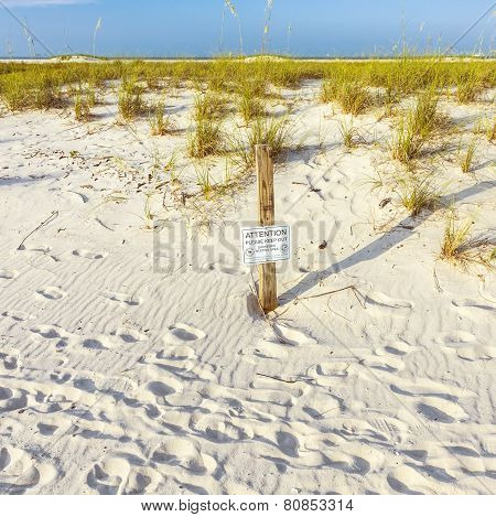 Protected Area For Shorebird Nesting At The Beach