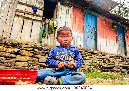 Little Boy Pealing Potatoes In Nepal