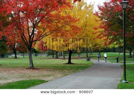 Herbst-Radtour