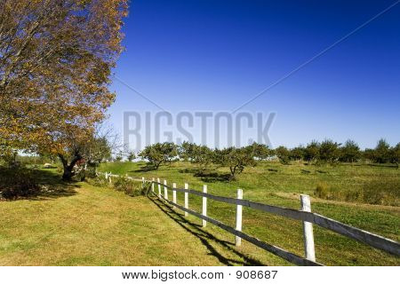 Fence_2241