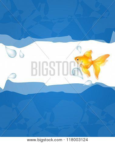 Goldfish Illustration Background