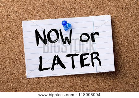 Now Or Later - Teared Note Paper  Pinned On Bulletin Board