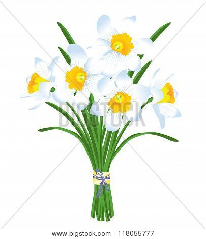 Spring Bouquet Of White Daffodils