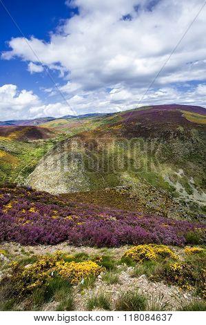 View of Sanabria landscape Sanabria Natural Park Spain