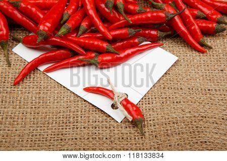Chili Price-list