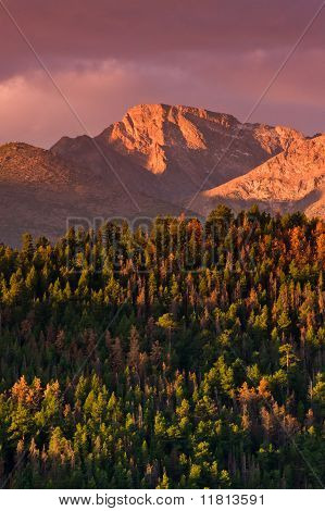 A beautiful Autumn sunrise over the forest and Colorado's famous Long's Peak poster