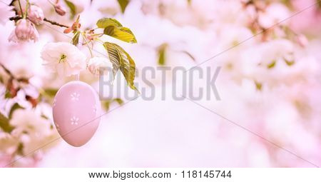 Easter egg decorated on blooming cherry tree,Closeup.