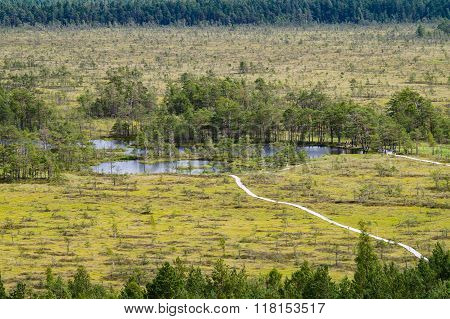 Curve Hiking Trails Of Tolkuse Bog, Estonia