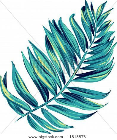 vector illustration of a tropical leaf. Artistic brush stokes create a layered botanical illustration of a palm. single isolated element for decoration, fashion. Nature, tree, aloha colors.