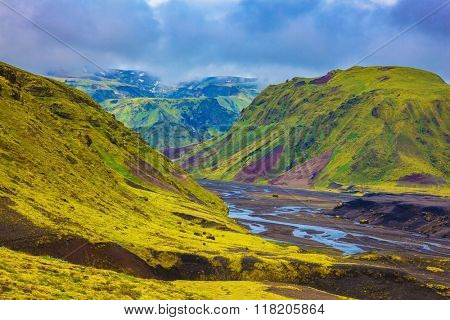 Picturesque basalt hills covered with green grass and moss-polar. Streams from melting glaciers flowing down the canyon. Canyon Pakgil in Iceland