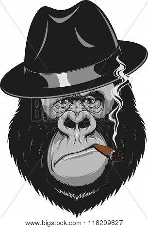 Monkey with a cigar