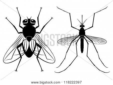 Vector illustration - silhouettes of a fly and mosquito