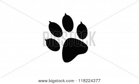 Imprint of the black paw prints of the animal.