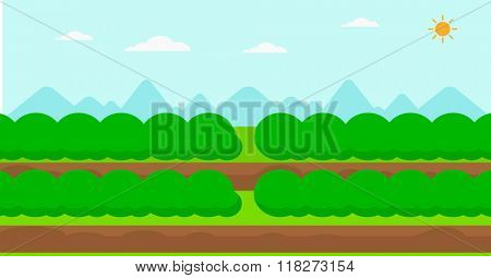 Background of field rows with green bushes.