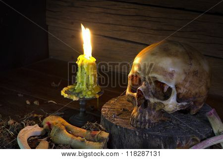 Skull And Light Candle  - Still Life Style