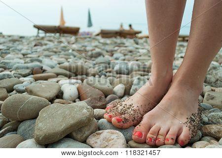 Legs On Stone Beach