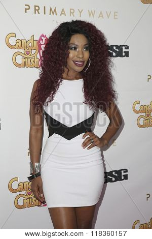 LOS ANGELES - FEB 14:  Porscha Coleman at the Primary Wave 10th Annual Pre-GRAMMY Party at the London West Hollywood on February 14, 2016 in West Hollywood, CA