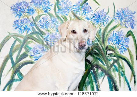 happy healthy yellow lab in front of flowers