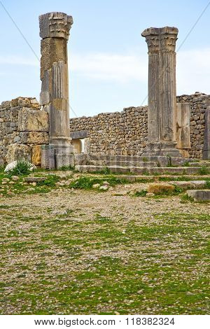 Volubilis In Morocco Africa The Old Roman  Monument And Site