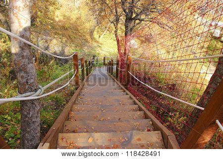 wodden stairs in the autumn