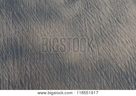 Stippled Beige-and-gray Wet Sand