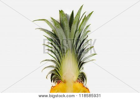 Fresh Florida Pineapple Isolated On White Background