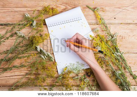 Hand Write A Recipe In Notepad On Wooden Table, Herbs Around