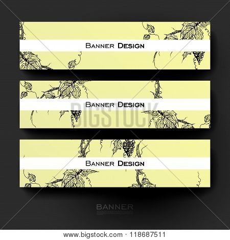 Beautiful banner vector template with grapes ornament background