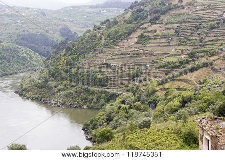 village, hamlet, country, thorp, borough, town, suburb, old village, mesão frio, river, nature, dour
