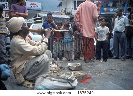 VASHISHT, INDIA - JULY 5, 2006 - A snake charmer draws a crowd with his cobras in baskets in Uttar Pradesh.