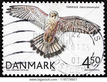 Postage Stamp Denmark 2004 Common Kestrel,  Bird Of Prey