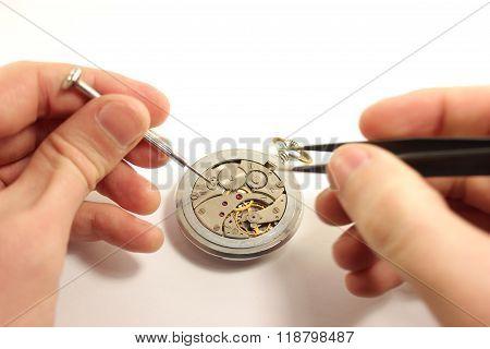 Repairing Wrist Watch.